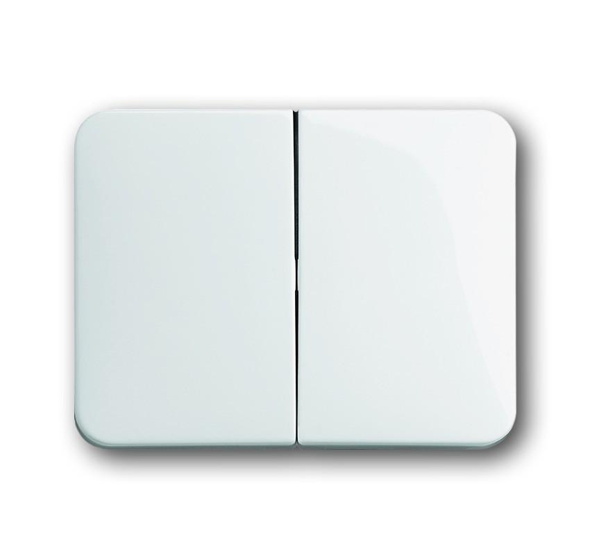 busch j ger wippe 1785 24g homeelectric. Black Bedroom Furniture Sets. Home Design Ideas